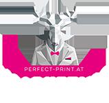 Webdesign Neunkirchen – Perfect Print Logo